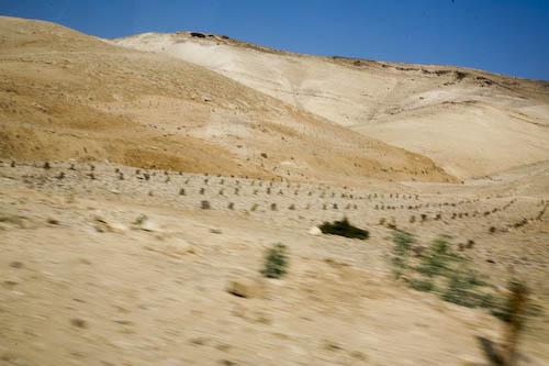 landscape-21-of-1.jpg