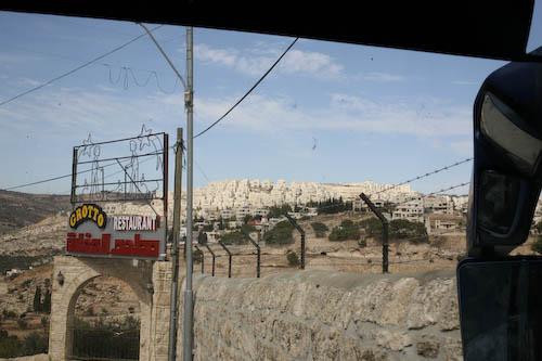landschap-9-of-1.jpg