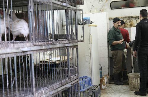 nablus-stad-a-6-of-1.jpg