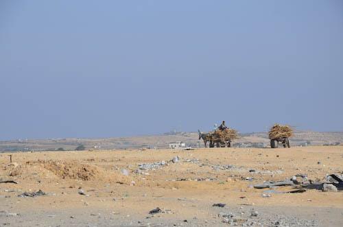 Gazasept14(93of 1)