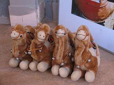 Palestijnse kamelen